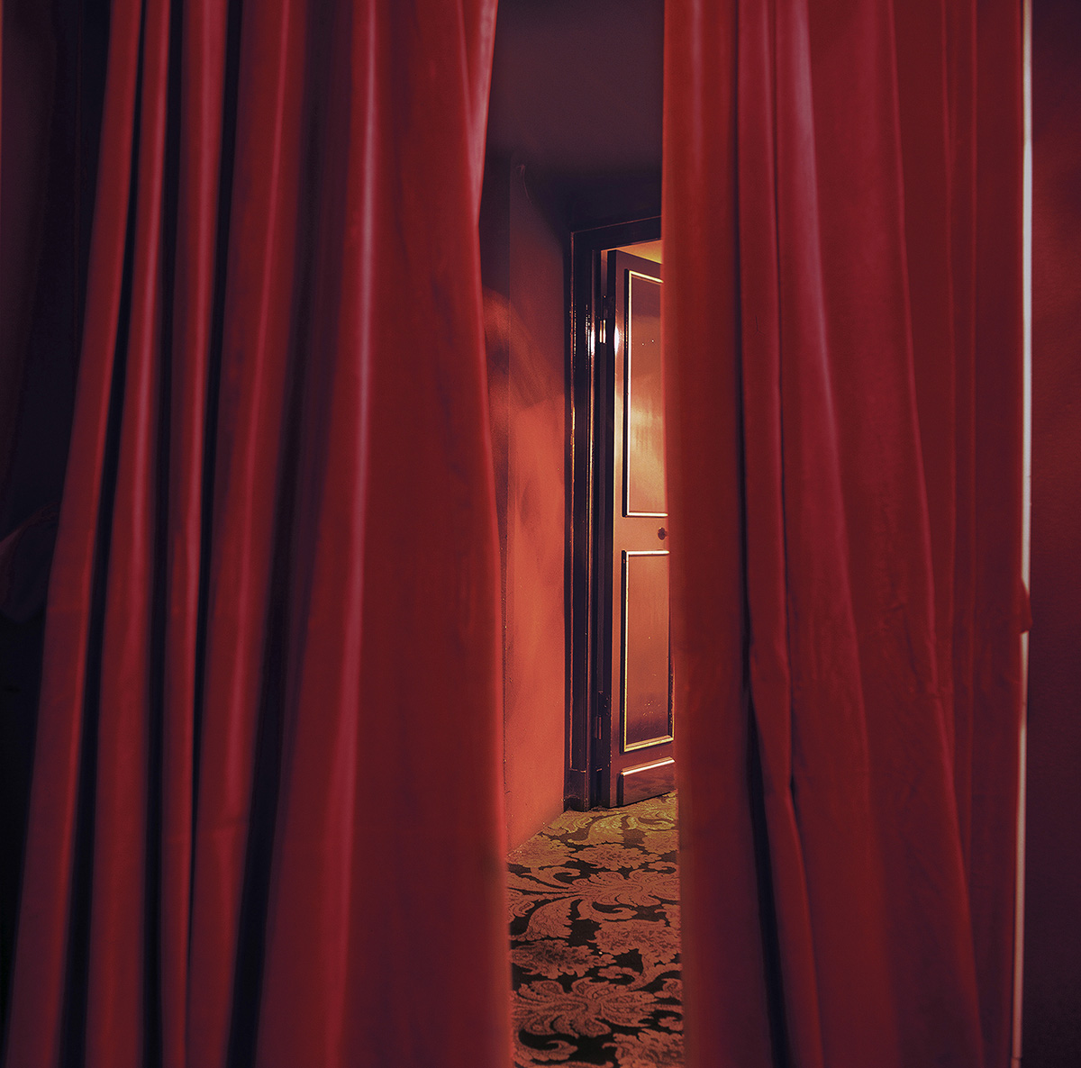 Anna Lehmann-Brauns -- Letzter Vorhang